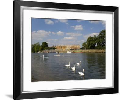 Swans and Sculls on the River Thames, Hampton Court, Greater London, England, United Kingdom-Charles Bowman-Framed Photographic Print