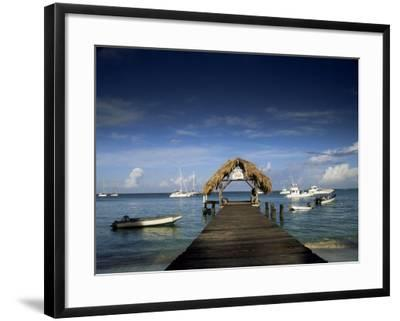 The Jetty, Pigeon Point, Tobago, West Indies, Caribbean, Central America-Julia Bayne-Framed Photographic Print