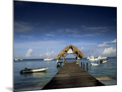 The Jetty, Pigeon Point, Tobago, West Indies, Caribbean, Central America-Julia Bayne-Mounted Photographic Print