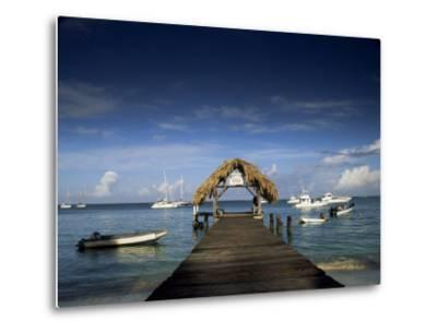 The Jetty, Pigeon Point, Tobago, West Indies, Caribbean, Central America-Julia Bayne-Metal Print