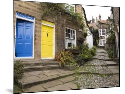 Yellow and Blue Doors on Houses in the Opening, Robin Hood's Bay, England-Pearl Bucknall-Mounted Photographic Print
