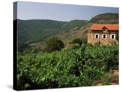 Farmhouse Near Millau, Aveyron, Midi Pyrenees, France-Michael Busselle-Stretched Canvas Print
