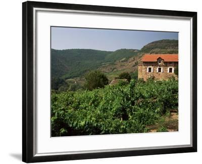Farmhouse Near Millau, Aveyron, Midi Pyrenees, France-Michael Busselle-Framed Photographic Print