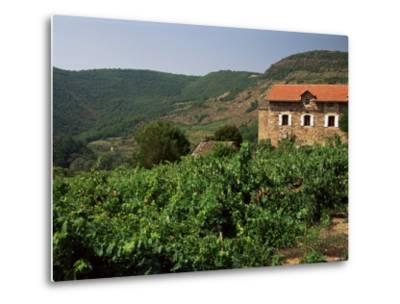 Farmhouse Near Millau, Aveyron, Midi Pyrenees, France-Michael Busselle-Metal Print