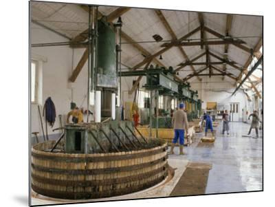 Champagne Wine Presses, Verzy, Champagne Ardennes, France-Michael Busselle-Mounted Photographic Print