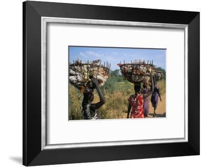 Nuer Women Carrying Sorghum, Gambella Region, Ilubador State, Ethiopia, Africa-Bruno Barbier-Framed Photographic Print