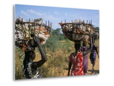 Nuer Women Carrying Sorghum, Gambella Region, Ilubador State, Ethiopia, Africa-Bruno Barbier-Metal Print