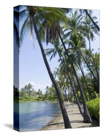 Waikaloa Beach, Island of Hawaii (Big Island), Hawaii, USA-Ethel Davies-Stretched Canvas Print