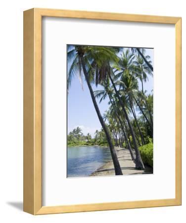 Waikaloa Beach, Island of Hawaii (Big Island), Hawaii, USA-Ethel Davies-Framed Photographic Print