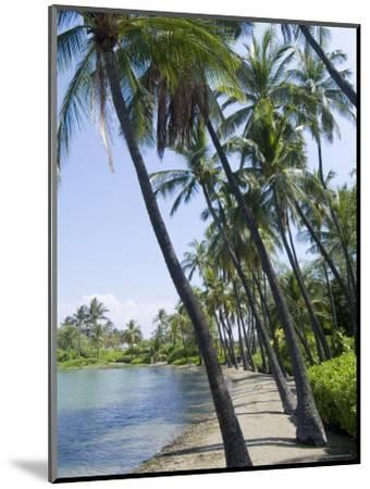 Waikaloa Beach, Island of Hawaii (Big Island), Hawaii, USA-Ethel Davies-Mounted Photographic Print
