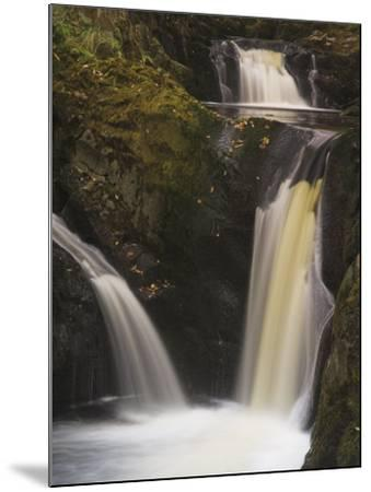 Pecca Falls, Ingleton Waterfalls Walk, Yorkshire Dales National Park, Yorkshire-Neale Clarke-Mounted Photographic Print