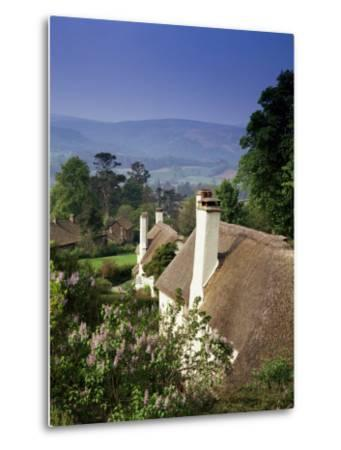 Thatched Cottages at Selworthy Green, with Exmoor Beyond, Somerset, England, United Kingdom-Chris Nicholson-Metal Print
