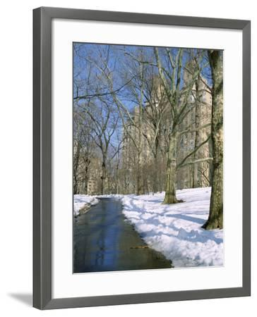 Bare Trees and Snow in Winter in Central Park, Manhattan, New York City, USA-David Lomax-Framed Photographic Print