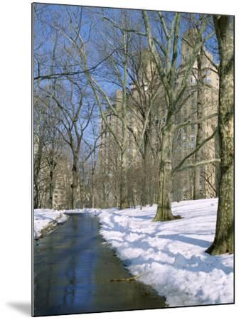 Bare Trees and Snow in Winter in Central Park, Manhattan, New York City, USA-David Lomax-Mounted Photographic Print