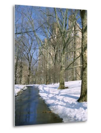 Bare Trees and Snow in Winter in Central Park, Manhattan, New York City, USA-David Lomax-Metal Print