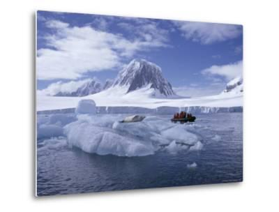 Tourists in Rigid Inflatable Boat Approach a Seal Lying on the Ice, Antarctica-Geoff Renner-Metal Print