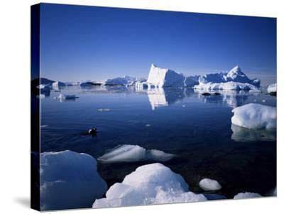 Ice Scenery and Seal, Antarctica, Polar Regions-Geoff Renner-Stretched Canvas Print