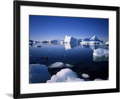 Ice Scenery and Seal, Antarctica, Polar Regions-Geoff Renner-Framed Photographic Print