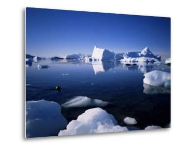 Ice Scenery and Seal, Antarctica, Polar Regions-Geoff Renner-Metal Print