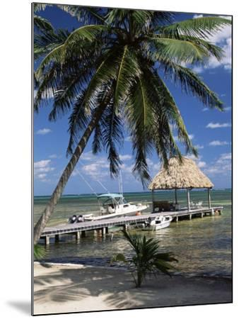 Main Dive Site in Belize, Ambergris Caye, Belize, Central America-Gavin Hellier-Mounted Photographic Print