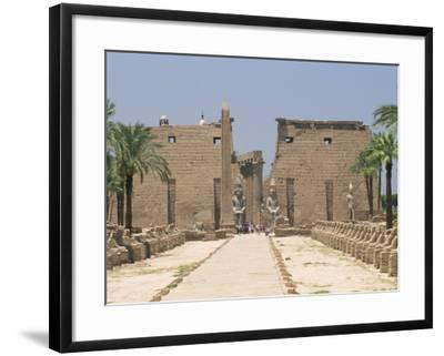 Avenue of Sphinxes Looking Towards Statues of Ramses II, Luxor Temple, Luxor, Thebes, Egypt-Gavin Hellier-Framed Photographic Print