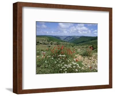 Causse Mejean, Gorges Du Tarn Behind, Lozere, Languedoc-Roussillon, France-David Hughes-Framed Photographic Print