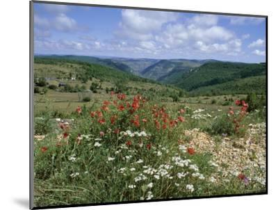 Causse Mejean, Gorges Du Tarn Behind, Lozere, Languedoc-Roussillon, France-David Hughes-Mounted Photographic Print