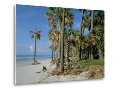 Sub-Tropical Forest and Coastline, Hunting Island State Park, South Carolina, USA-Duncan Maxwell-Metal Print