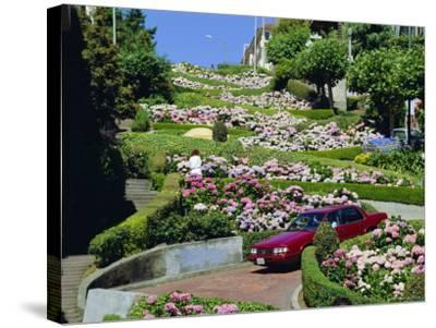 Driving Down Lombard Street, Russian Hill, California-Amanda Hall-Stretched Canvas Print