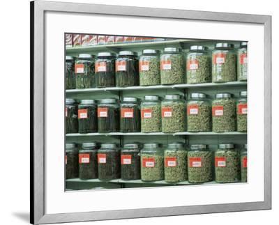 Dried Scallops in Jars, Dried Seafood Shop, Des Voeux Road West, Hong Kong Island, Hong Kong, China-Amanda Hall-Framed Photographic Print