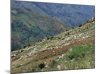 People Working in Steep Mountain Fields, at 2000M, Haiti, West Indies, Central America-Lousie Murray-Mounted Photographic Print