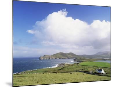 Valentia Island, County Kerry, Munster, Eire (Republic of Ireland)-Roy Rainford-Mounted Photographic Print