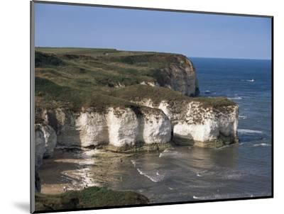Flamborough Head, East Yorkshire, Yorkshire, England, United Kingdom-David Hunter-Mounted Photographic Print