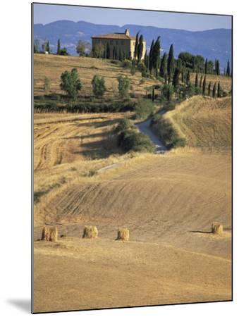 Rolling Landscape in Siena Province, Tuscany, Italy-Bruno Morandi-Mounted Photographic Print
