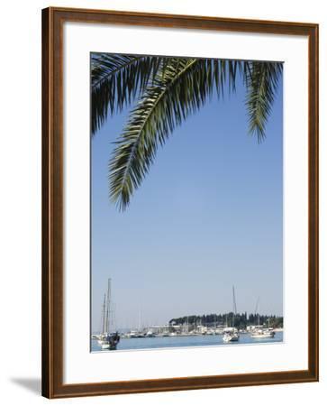 Harbour Yachts, Split, Dalmatian Coast, Croatia-Christian Kober-Framed Photographic Print