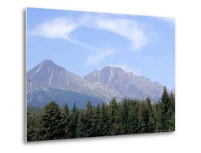 Mountain Pines, Vysoke Tatry Mountains, Vysoke Tatry, Slovakia-Richard Nebesky-Metal Print