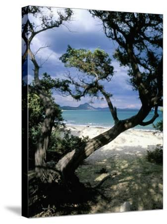 Southeast Coast, Island of Sardinia, Italy, Mediterranean-Oliviero Olivieri-Stretched Canvas Print