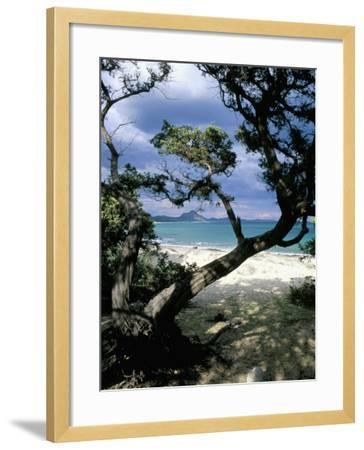 Southeast Coast, Island of Sardinia, Italy, Mediterranean-Oliviero Olivieri-Framed Photographic Print