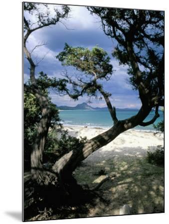Southeast Coast, Island of Sardinia, Italy, Mediterranean-Oliviero Olivieri-Mounted Photographic Print