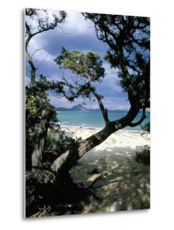 Southeast Coast, Island of Sardinia, Italy, Mediterranean-Oliviero Olivieri-Metal Print