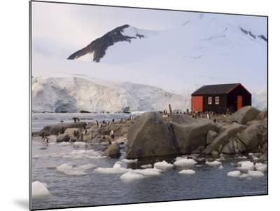 British Base, Port Lockroy, Antarctic Peninsula, Antarctica, Polar Regions-Sergio Pitamitz-Mounted Photographic Print