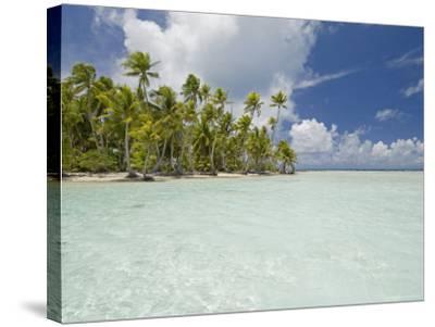 Blue Lagoon, Rangiroa, Tuamotu Archipelago, French Polynesia Islands-Sergio Pitamitz-Stretched Canvas Print
