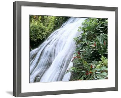 Shaw Waterfalls, Ocho Rios, Jamaica, West Indies, Central America-Sergio Pitamitz-Framed Photographic Print