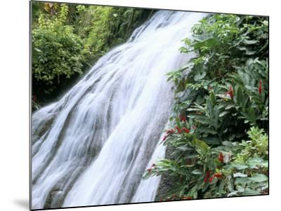 Shaw Waterfalls, Ocho Rios, Jamaica, West Indies, Central America-Sergio Pitamitz-Mounted Photographic Print