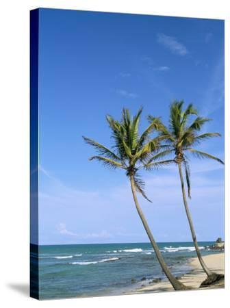 Praia Do Amor, Pipa (Natal), Rio Grande Do Norte State, Brazil, South America-Sergio Pitamitz-Stretched Canvas Print