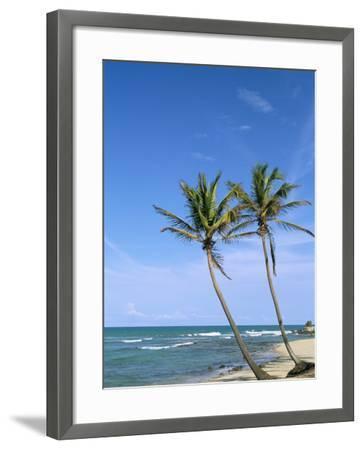 Praia Do Amor, Pipa (Natal), Rio Grande Do Norte State, Brazil, South America-Sergio Pitamitz-Framed Photographic Print