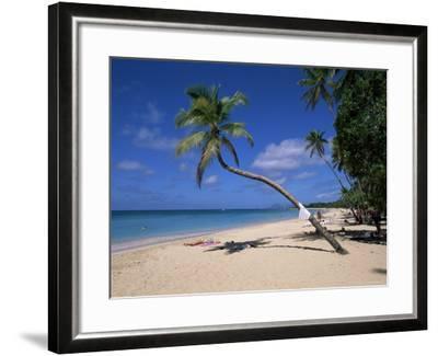 Les Salines Beach, Near Sainte Anne, Martinique, Lesser Antilles-Yadid Levy-Framed Photographic Print