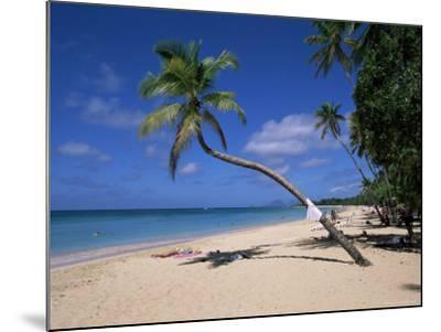 Les Salines Beach, Near Sainte Anne, Martinique, Lesser Antilles-Yadid Levy-Mounted Photographic Print