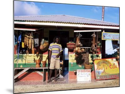 Colourful Souvenir Shop, Speyside, Tobago, West Indies, Caribbean, Central America-Yadid Levy-Mounted Photographic Print