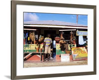 Colourful Souvenir Shop, Speyside, Tobago, West Indies, Caribbean, Central America-Yadid Levy-Framed Photographic Print